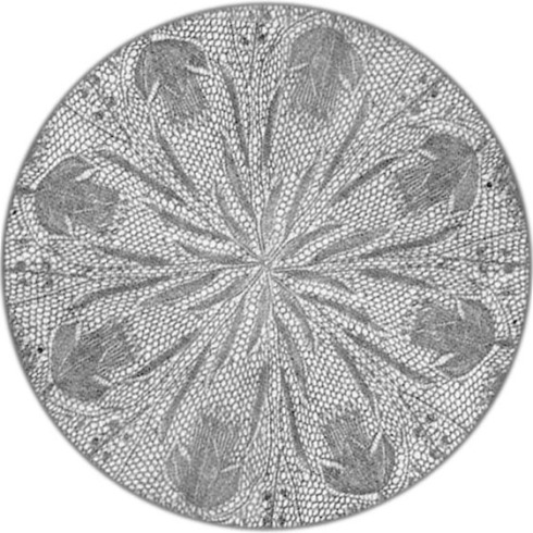 narzisse-original-photo-first-flower-ring-watermark